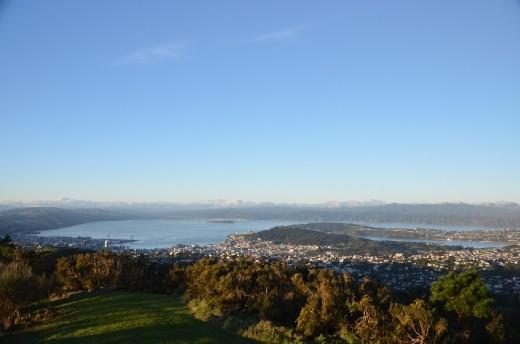 View over Wellington