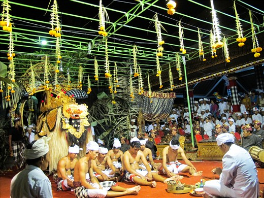 A part of Hindu religion ceremony held religiously with Barong (a sacred good spirit creature) stands behind, men with their heads down sit in front of the leader to receive prayers as a symbol of fighting the devil. Everyone else who come stand at its surrounding to watch how it happens.