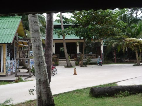 View from my bungalow to the main reception/restaurant area