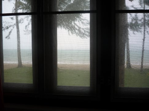 Looking out my window on the storm...
