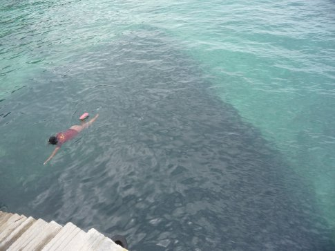 This about a third of a shoal of wee fish, under the jetty, millions of them, amazing. Locals came out to snorkel it