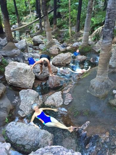 Zebedee Springs...ich liege bis zum Hals im glasklaren warmen Wasser. Sehr entspannend!