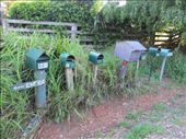 mailboxes....a lot. Berry: by heleneaustralia, Views[98]