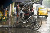 THE PULL RICKSHAW- A HERITAGE VEHICLE OF OLD CITY: by heritage, Views[269]