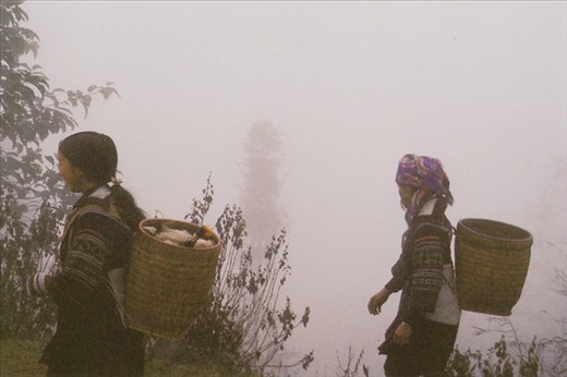 Following two women with supplies from town on their backs, through the mountainous Sapa, one might mistake themselves for being in the clouds.