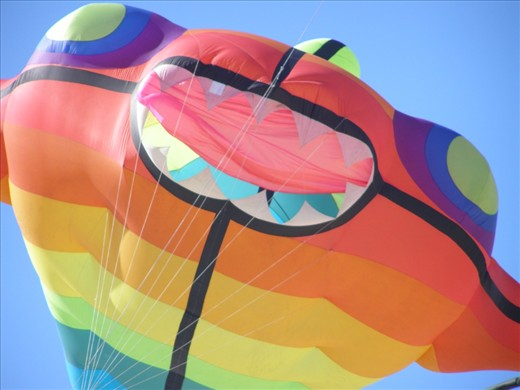 The exciting colors of the Semaphore Kite festival