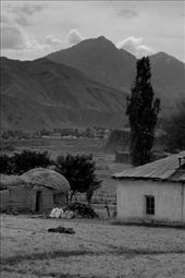 by hintonnn, Views[165]