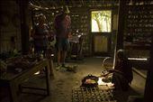 the tourists saw daily activity people make coconut sugar in borobudur: by holylandofborobudur, Views[108]