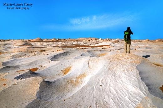 Explore Sea beds under the Desert Sun