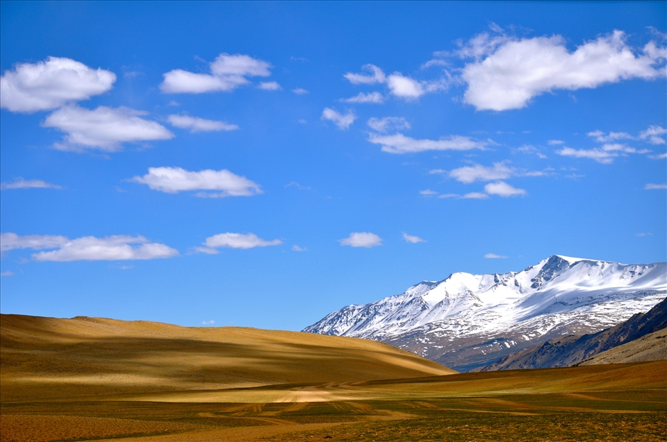 Snow, Sand and Sky - Colours of Ladakh