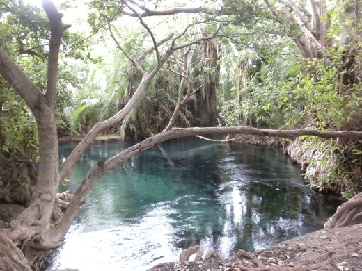 the springs...a bit of paradise