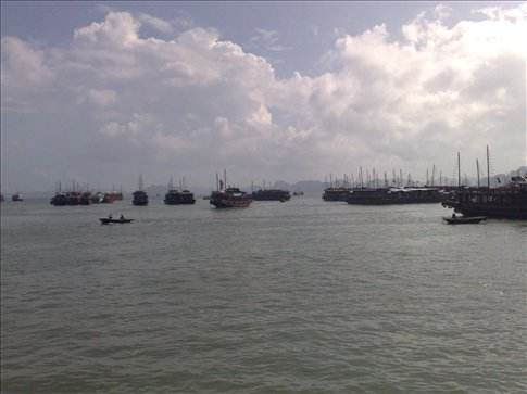Boat floatilla at the harbor