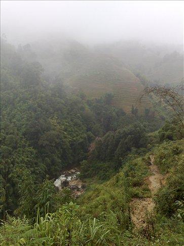 the hillsides
