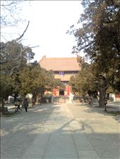 Confucius Temple in Beijing: by houdyman, Views[193]