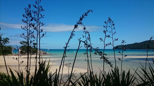 Tryphena Harbour, Great Barrier Island