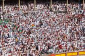 The Crowd Goes Wild: by iain_and_tamara, Views[204]