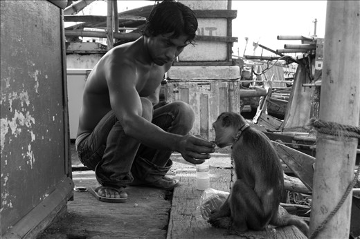 Friends can be found everywhere, including in slums coastal of Jakarta. A young fisherman gave an refreshment to a monkey. He never forgot to share food and drink to the monkey before going to the sea though it was not his.