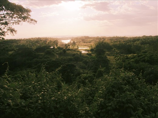 A view from uphill