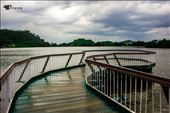 Surinsar Lake, Jammu & Kashmir: by isudeep, Views[145]