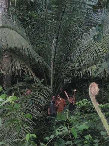 Miral and friends at a giant fern on another group hike