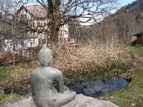 Buddha overlooks the frog pond, with the main house in the distance