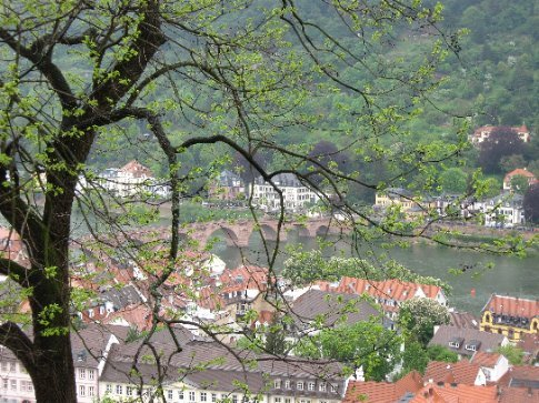 Picturesque view from the Heidelberg castle
