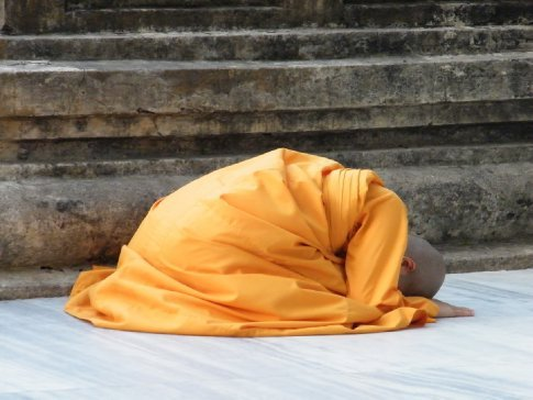 As is the tradition in many Buddhist lineages, monastics are also seen throughout the Bodhi Temple complex prostrating toward the spot of the Buddha's enlightenment, offering themselves completely to the model the Buddha provides.