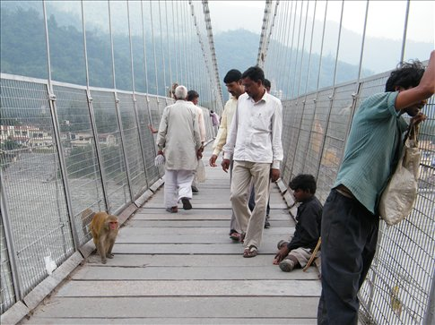 Pilgrims, monkeys, beggars...just another day on the bridge in Rishikesh