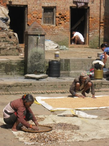 In and out of the backstreets of Nepal's villages and cities are its inhabitants, busy with daily chores.  Here, drying beans in Bhaktapur.