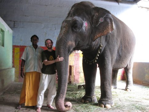 While we waited for Trichy's Thiruvanaikaval Jambukeshwara Temple to re-open after lunch, we were befriended by a young elephant keeper. Many temples in South India honor the deity Ganesh with blessing-giving elephants. You offer the elephant a few rupees and the elephant touches its trunk to your head. We were worried about how they are treated -- but our hour spent with Shakti the Elephant and his trainer proved a deep love and a deep commitment between human and animal. Shakti is truly one of the family -- and an incredibly sweet and intelligent being!