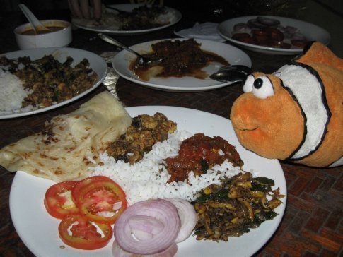 Turns out our homestay host OWNED HIS OWN RESTAURANT – so every evening by moonlight, we had dish after dish after dish of Kerala's best seafood specialties (picked up each morning live from the docks of the fish market) – shrimp, calamari and shark, all swimming in their own mini-Arabian Seas of rich chilied sauces.