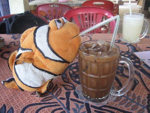Overloaded with condensed milk and better than a Starbuck's frappe, Tangelo gets his Iced Laos Coffee fix of the day.