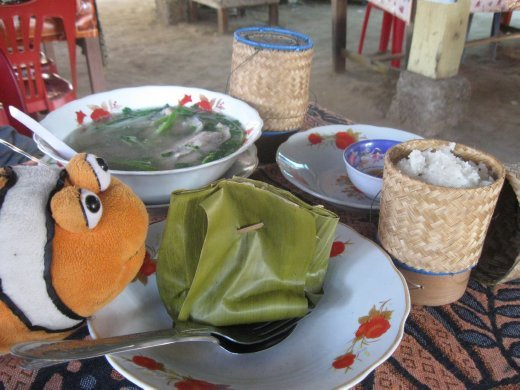 Sticky Rice in bamboo containers and herbed steamed fish (sorry Tangelo!) in banana leaf - yum!