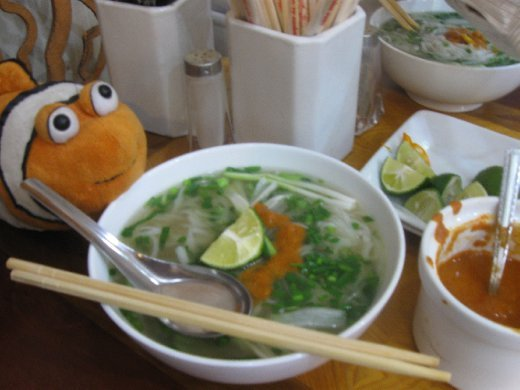Tangelo didn't take long either, having his first of many, many tastes of true-on Vietnamese Pho (noodle soup).