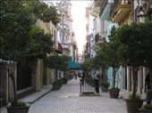 We already miss Cubano atmosphere: by ivanci, Views[272]