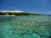Swimming in that? ... Are you serious? ..... Yes! Bunaken Island offers the best snorkelling ever!: by ivanci, Views[210]