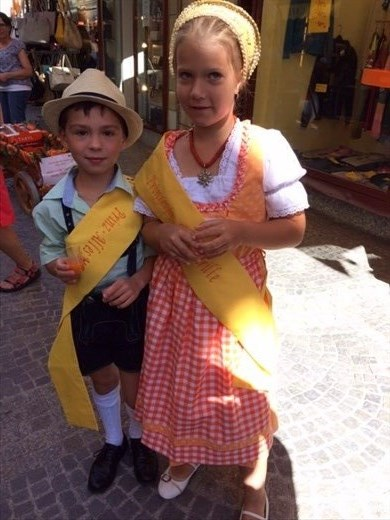 Prince and Princess apricot in Krems, the Wachau Valley.