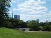 chillen im park mit blick auf downtown toronto: by jackivent, Views[240]