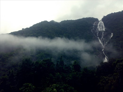 A river known as  Mandovi descends downwards from a  from a ghat forming Dudhsagar (Stream of milk) is located in Western Ghats. During monsoons the view will be amazing. This photograph captures the waterfall from top to foot.