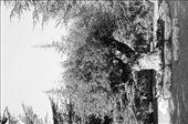 by jakeandgenny, Views[124]
