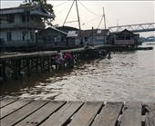 The residents of the houses come out at around 5pm, big family affair. They will bath, wash clothes & the one that made me look twice brush teeth in the water. Kapuas River, Pontianak, Kalimantan: by jambopablo, Views[270]