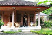 Our hut in Lovina: by jamesanddan, Views[359]