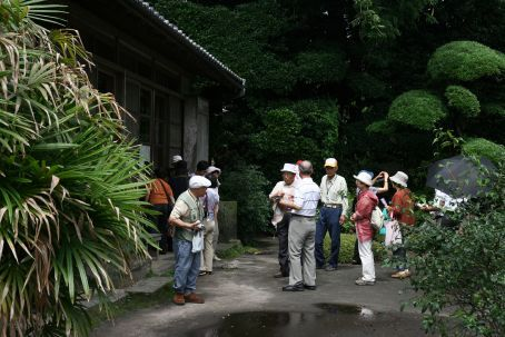 A hilarious group of Japanese Tourists...snap snap snap