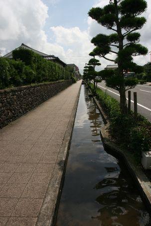 Karp Pond running alongside the road