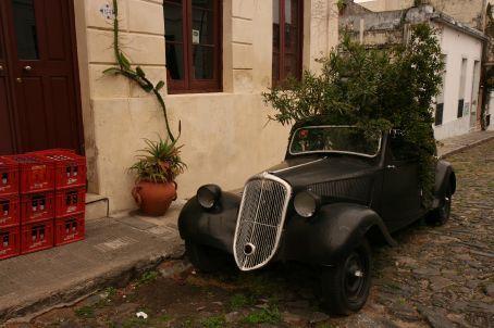 The new ´green´Uruguain car...