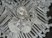 Bird made of human bones pecking out the eye of a turkish person: by jamesandjulie, Views[205]