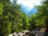 Samaria Gorge: by jamesandjulie, Views[156]