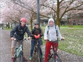Myself, Sara and Evelien cycling Portland: by jamesshanks, Views[193]