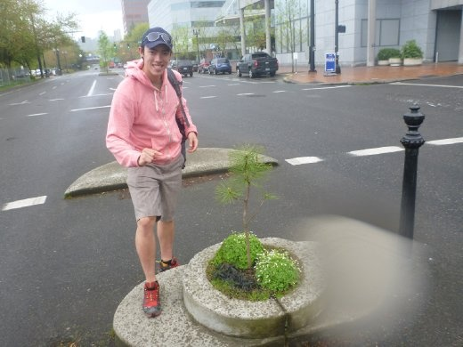 Mill Ends Park - Smallest park in the world!