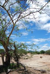 Dry into the wet season!: by jamiewhittlenewquay, Views[133]